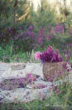 Purple picnic.