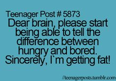 Dear brain, please start being able to tell the difference between hungry and bored. Sincerely, I'm getting fat!