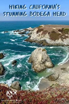 If you're visiting California's Sonoma Coast, then you have to include Bodega Head Trail on your itinerary--an easy hike with gorgeous coastal views! Sonoma California, Sonoma Coast, Visit California, California Coast, California Travel, Northern California, Usa Travel, Solo Travel, Paris Travel