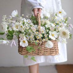 Flower Baskets, Luxury Flowers, Romantic Things, Flower Arrangements, Bouquet, Table Decorations, Garden, Instagram, Beautiful Things