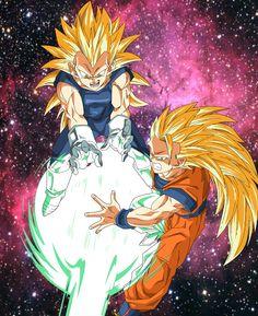 Goku and Vegeta World Protectors