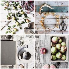 #FourIAdoreFriday Feature . Hello Friday friends.. . . Thank you ALL ..(always).. for sharing your quiet moments in the Four I Adore feed. Here are four we.simply adore. so completely lovely. . Please join @prairiegirlstudio and I in celebrating this weeks feature four. .  @keepingwiththetimes  @pocketfulacorns  @koshka1960  @lindahoye . . To play along (any day of the week)...simply tag your still moments with #fouriadorefriday  . . xo