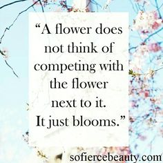 Do you, beautifully! #Wednesday #quote #quotes #flowers #beautiful