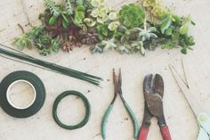 can't wait to try this DIY Succulent Crown project from the my own propagated succulents :)