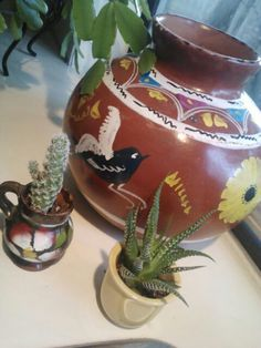 My pottery & succs. :-)