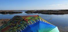 Parapluies en Espagne (suite)