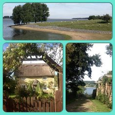 Embedded image permalink Rutland Water, The Visitors, Embedded Image Permalink, Sunny Days, Acre, Countryside, England, Mornings, United Kingdom