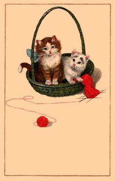 http://www.agoodyarn.net/Images/KnittingImages/KittensInBasketWithKnittingB.jpg