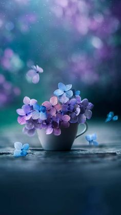Flowers wallpaper by georgekev - ad - Free on ZEDGE™ Beautiful Flowers Wallpapers, Beautiful Nature Wallpaper, Colorful Wallpaper, Purple Flowers Wallpaper, Black Wallpaper, Flower Iphone Wallpaper, Flower Backgrounds, Iphone Backgrounds, Wallpaper Backgrounds