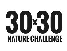 30×30 Challenge!