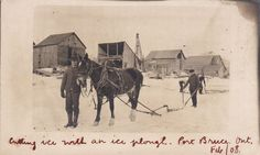 RP: Cutting ice with ICE PLOUGH, PORT BRUCE , Ontario , Canada , 00-10s