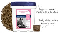 SmartPituitary Senior® Pellets - Equine Pituitary Health Supplements from SmartPak Equine