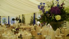 Our marquee waiting for its guests