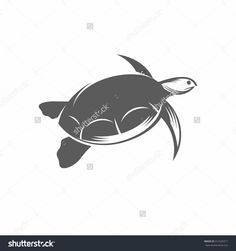 Vector illustration of a turtle in the old-fashioned style and line-art style. Can be used as a tattoo  / Sea turtle in the water black and white vector illustration