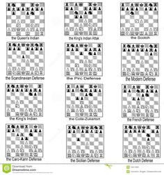 Collection Of Chess Openings - Download From Over 62 Million High Quality Stock Photos, Images, Vectors. Sign up for FREE today. Image: 14511052