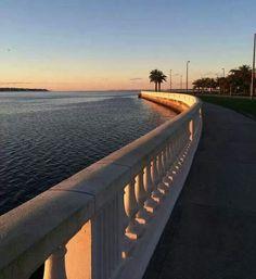 Bayshore Blvd Tampa Florida