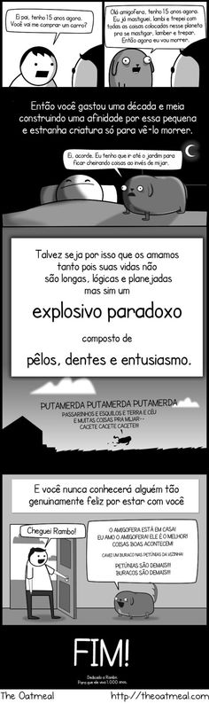"""My dog – The Paradox. So funny. You'll recognize your own """" explosive paradox"""" in here somewhere! I Love Dogs, Puppy Love, Rambo, Dog Comics, Dog Life, Laugh Out Loud, I Laughed, Funny Animals, Bedrooms"""
