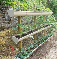 Gouttières en plastiquepour réaliser un jardin potager