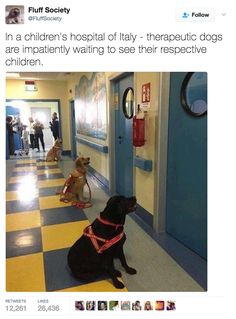 That's adorable. The children must love visits from their doggy friends.