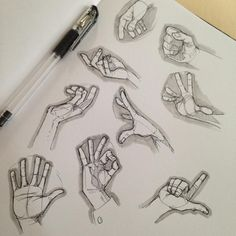 Hand Reference Sketch / Drawings
