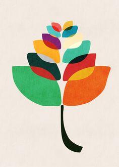 Lotus Flower by Picomodi