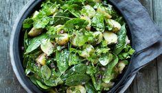 Lun potetsalat med babyspinat, rødløk og urter Sprouts, Salad Recipes, Spinach, Potatoes, Vegetarian, Vegetables, Foods, Food Food, Food Items