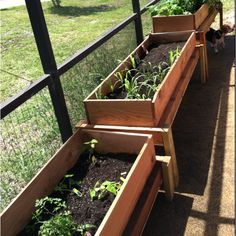 I did it! I built 3 raised cedar garden beds. I love them and am so proud of this project. Let's see if we actually grow any of what we planted, cucumber, tomatoes, watermelon, zucchini, herbs, corn, broccoli, carrots & asparagus.