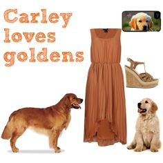 """Carley loves goldens"" by monaruth on Polyvore"