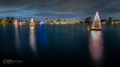 Christmas Trees float every year on Alamitos Bay in Belmont Shore, Long Beach, California.