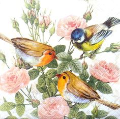 20 Vintage PAPER Table NAPKINS Lunch,  for Party, Decoupage, Craft,Birds on