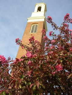 Bell Tower #MiamiOH