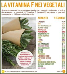 La vitamina F nei vegetali Health And Nutrition, Health And Wellness, Health Fitness, Healthy Tips, Healthy Eating, In Natura, Vitamins And Minerals, Going Vegan, Natural Health