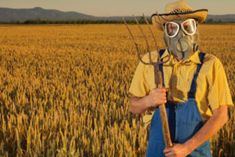 10 Crazy Things Pesticides Are Doing to Your Body http://www.rodalenews.com/agrochemicals?cid=social_20140519_24250984