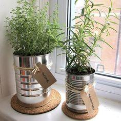 Semangat hijaunya mana Sobat Indmira?  Kalau di rumah banyak kaleng bekas susu sarden atau biskuit yang tidak terpakai dimanfaatkan yuk jadi pot cantik kemudian tanami dengan tanaman kesukaan kalian. Nah selain mengurangi sampah logam dan hemat biaya kalian juga ikut mencintai lingkungan lho. Ingin mencoba? . . . #IndmiraPic #Indmira #hydroponics #aquaponics #aqua #plantation #organicproducts #urbanfarming #vertikultur #verticalfarming #hidroponik #hidroponikindonesia #akuaponik #menanam…