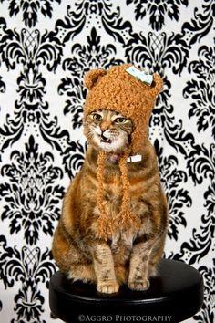 crochet hats babyadult by craftycrochet11 on Etsy, $12.00