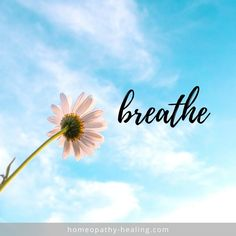 We are inclined to hold our breath when we are stressed or anxious yet one of the most effective ways to relax is to BREATHE. It does require a focused approach but the benefits are huge in calming your mind. Anxiety Relief, Stress Relief, Balance Hormones Naturally, Hormone Balancing, Ways To Relax, Health Matters, Homeopathy, Menopause, Anxious