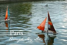 Paris Through My Lens/childhood memories in Cleveland at the museum of natural history swan n duck lake