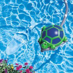polaris turbo turtle
