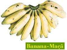 Banana Maça