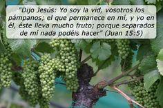 """Con frecuencia pensamos que podemos hacer las cosas sin la ayuda de Dios, pero Jesús dijo que separados de él """"nada podemos hacer"""""""