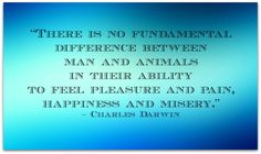 """Charles Darwin — """"There is no fundamental difference between man and #animals in their ability to feel pleasure and pain, happiness, and misery."""""""