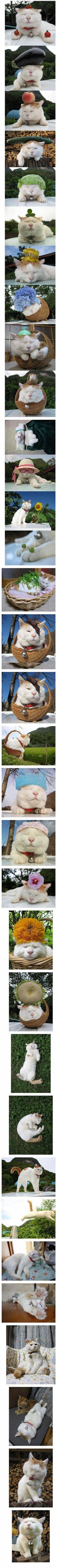Oh my god, pretty cute. i wanna cry, LOL