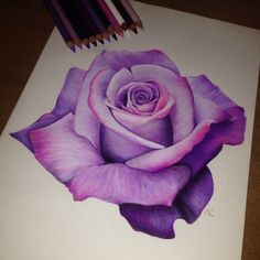 rose flower - All About Colored Pencil Artwork, Pencil Art Drawings, Realistic Drawings, Art Drawings Sketches, Colorful Drawings, Rose Drawings, Rose Zeichnung Tattoo, Rose Drawing Tattoo, Watercolor Pencil Art