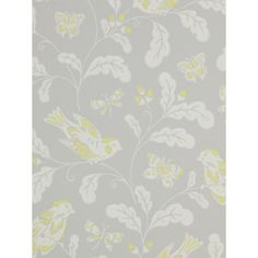 Buy Jane Churchill Songbird Wallpaper Online at johnlewis.com