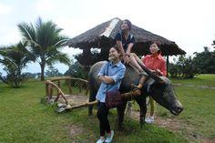 Eden Resort  Davao 2016