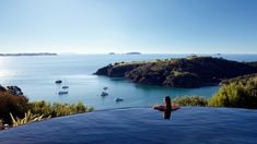Infinity pool at Delamore Lodge Waiheke Island Swimming Pool Parts, Best Swimming, Oasis, Piscina Do Hotel, Adventure Treks, Beachfront House, Waiheke Island, Khao Lak, Hotel Pool