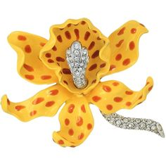 Kenneth Jay Lane Yellow/Brown Spots Orchid Pin (Yellow/Brown) Brooches... ($150) ❤ liked on Polyvore featuring jewelry, brooches, pin brooch, kenneth jay lane brooch, kenneth jay lane jewelry, brown jewelry and flower charms