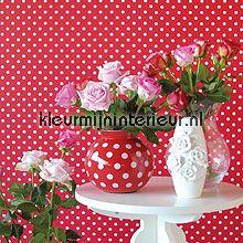 Behang winkel de grootste behang beleving Bookmark and Share kleurmijninterieur.nl      Behang     Fotobehang     Interi