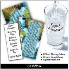 Cash Flow Mini