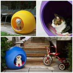 Singular Pets Casa para #mascotas #maskokotas #perros #gatos